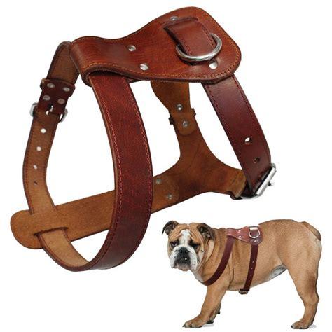 best genuine leather pet harness for pitbull bulldog