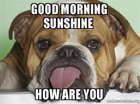 Good Morning Sunshine Meme - good morning sunshine how are you make a meme