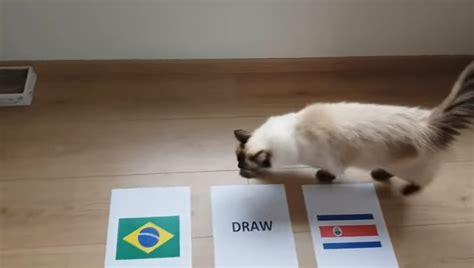 ti 234 n tri m 232 o dự đo 225 n kết quả tỉ số world cup brazil vs