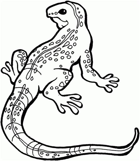 cute lizard coloring pages lizard coloring pages