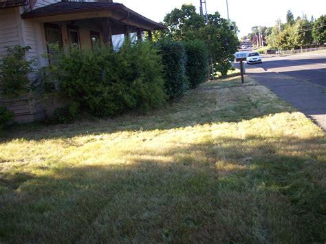 landscaping affordable landscaping