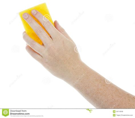 amazing of stock photo hand with sponge cleaning bathroom female hand holding a cleaning sponge royalty free stock