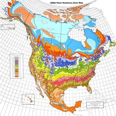usda map file usda hardiness zone map jpg