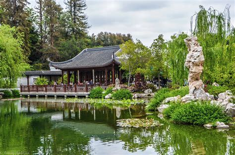 chinese gardens huntington libary and gardens photograph by tommy anderson