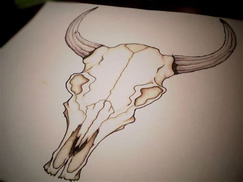 longhorn skull tattoo designs bull skull drawings 18 zodiac bull skull design by
