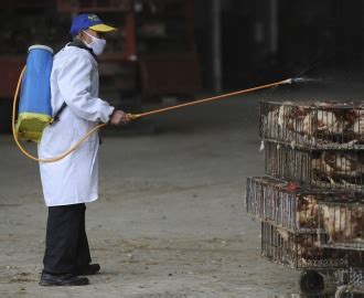 7 Alleged Dangers Of The N1h1 Flu by Mapping China S Bird Flu Outbreak The Atlantic