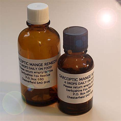 Home Remedies For Mange by Derbyshire Fox Rescue Sarcoptic Mange Information Site