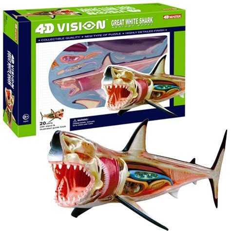 Terlaris Figur Figure Great Warrior Puzzle 4d European Crusader With 4d vision great white shark anatomy model educational toys planet