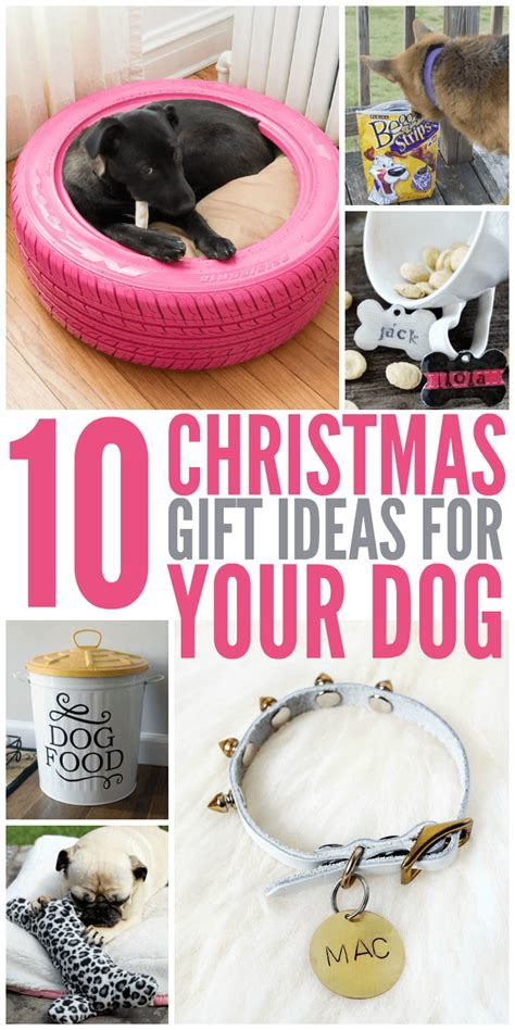gift ideas for 10 gift ideas for your glue sticks and