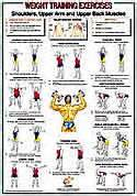 Dumbbell workout health exercise charts posters for medical or fitness