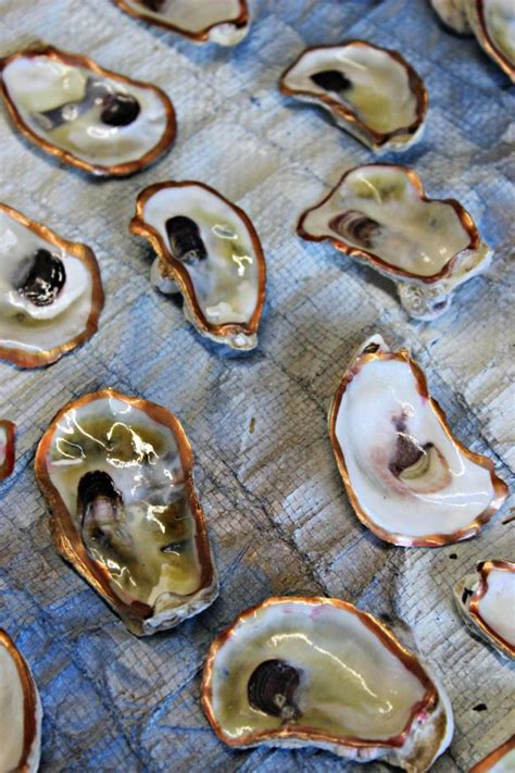 oyster shell craft projects best 25 oyster shells ideas on
