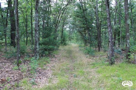 land and timber combination ag land and timber land with great in