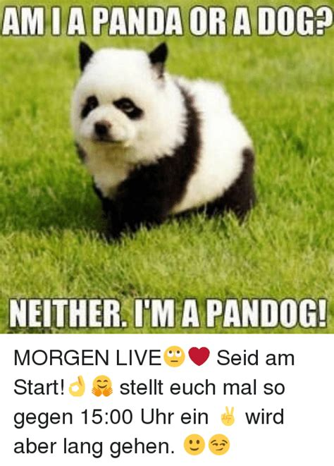 panda meme www pixshark com images galleries with a bite