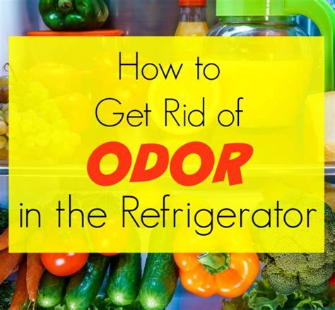 how to get rotten smell out of freezer how to get rid of odor in a refrigerator get green be well
