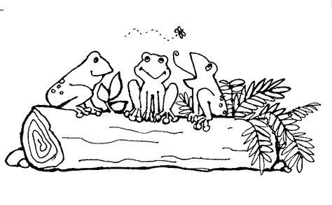 coloring page frog on a log mormon share frogs on a log