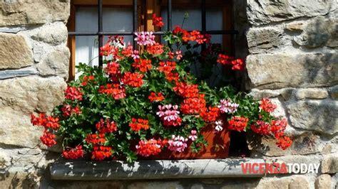 balconi e terrazzi fioriti quot balconi e terrazzi fioriti quot a torri di quartesolo eventi
