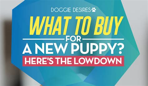 what to buy for a new puppy what to buy for a new puppy here s the lowdown