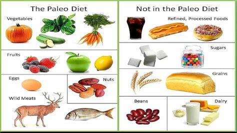 alimentazione paleolitica la dieta paleo la dieta dal paleolitico