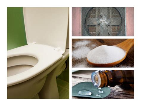 natural way to go to the bathroom natural ways to go to the bathroom when constipated 28
