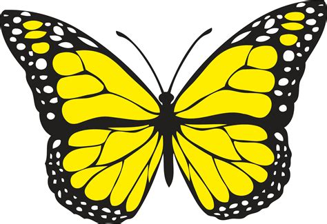 Butterfly Colour butterfly 1 colour icons png free png and icons downloads