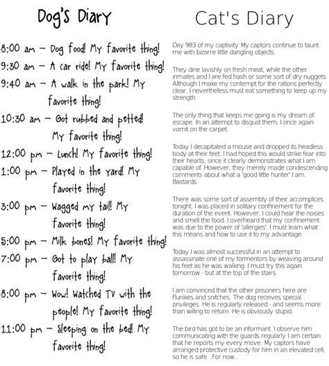 puppy diary diary cat diary memes