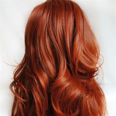 warm hair color warm tone hair color bright hair color hair