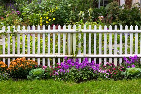 white backyard fence 26 white picket fence ideas and designs