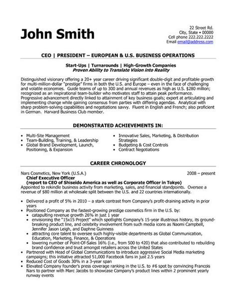 professional mis executive templates to showcase your talent