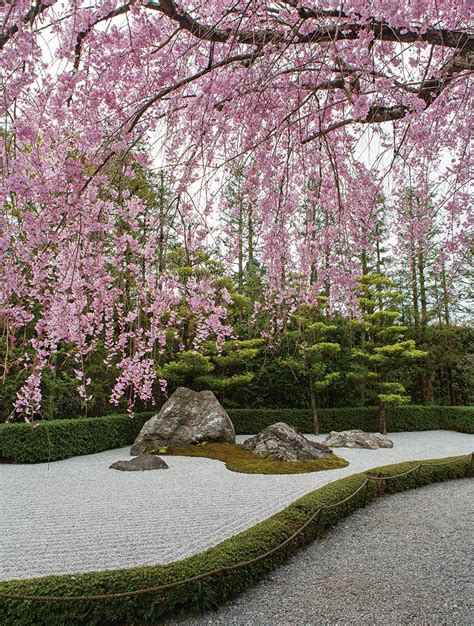 Home Landscape Design Tool by The Secret Beauty Terror And Power Of Japanese Gardens