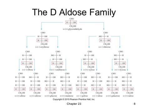 d aldoses carbohydrates 23 carbohydrates and nucleic acids wade 7th