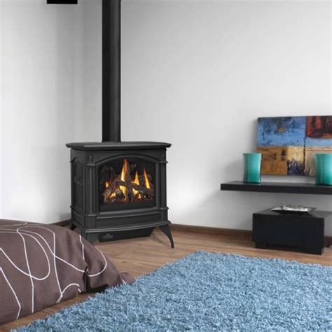 direct vent gas stove fireplace napoleon gds60 iron gas stove with direct vent b vent