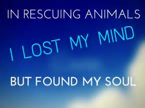 Animal rescue quotes inspirational dog rescue quotes when you adopt a