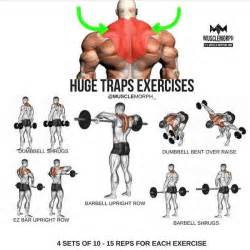 How To Get Bigger Shoulders At Home by Best 25 Traps Workout Ideas On Shoulder
