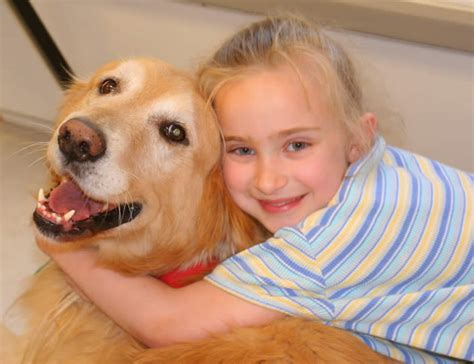 puppy for therapy dogs therapy dogs the different types and their benefits feinberg consulting inc