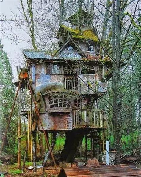 amazing tree houses amazing tree houses my world
