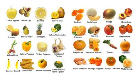 vegetables high in fiber 45 high fiber foods list for constipation and healthy stomach