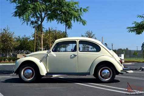 volkswagen bug white beautifully restored white volkswagen bug