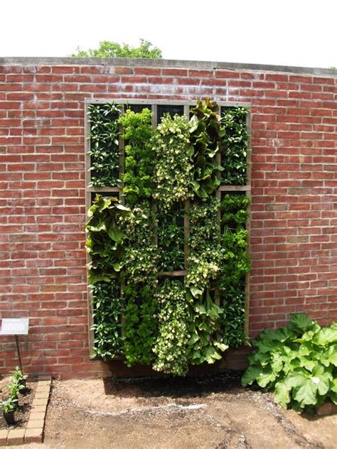 Growing Vertical Gardens Evoka Trading Vertical Gardens