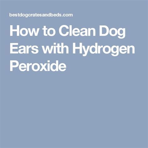 hydrogen peroxide on dogs 17 best ideas about cleaning dogs ears on goldendoodle grooming ear wax