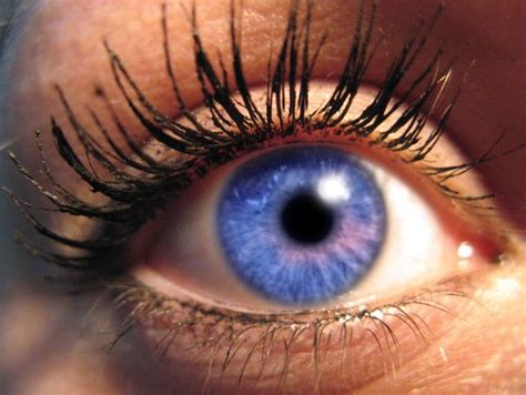 most common eye colors eye color eye colors common and uncommon types1