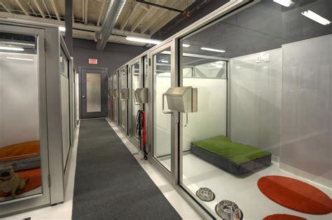 facility layout of hotel boarding facilities doggymom com