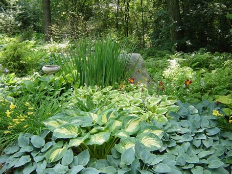 Shade Garden Ideas 100 Hardwood Mulch Shade Gardens
