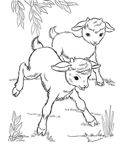 pokemon coloring pages of horsea pokemon fire horse coloring home