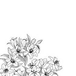 vintage line art tutorial 17 best ideas about flower drawing tumblr on pinterest
