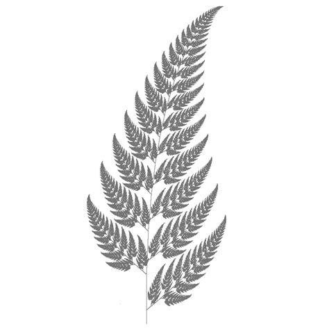 fern tattoos design silver fern designs search stuff i