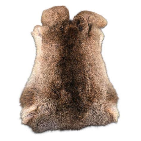 rabbit skins van buren bolsward bv