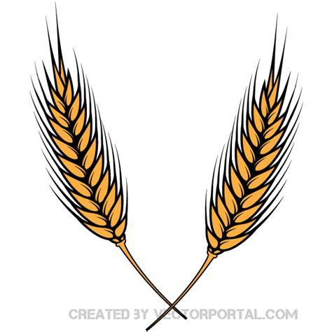 vector graphics clipart vector wheat clipart best