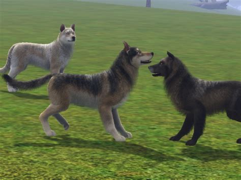 sims 3 pets challenges mod the sims sims 3 wolf legacy challenge