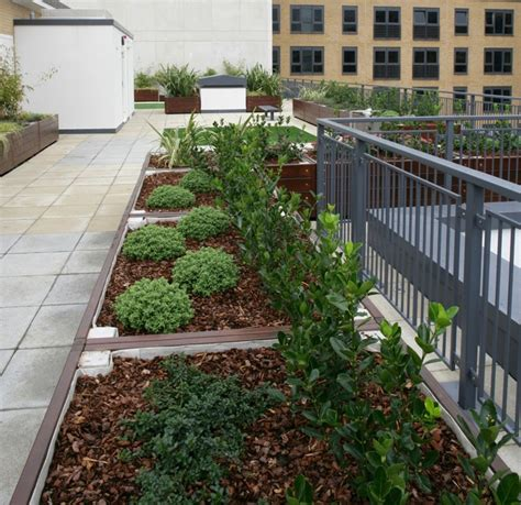 Roof Planters roof planter gallery 10 by design