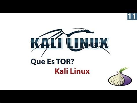 kali linux tutorial videos youtube playlist basics kali linux tutorial tor 11 youtube